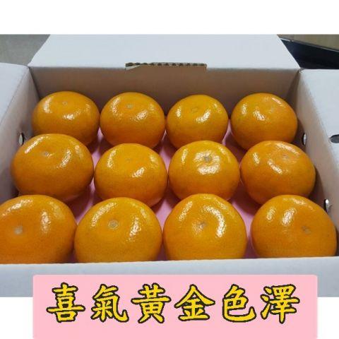 茂谷柑,年節熱銷水果禮盒開賣